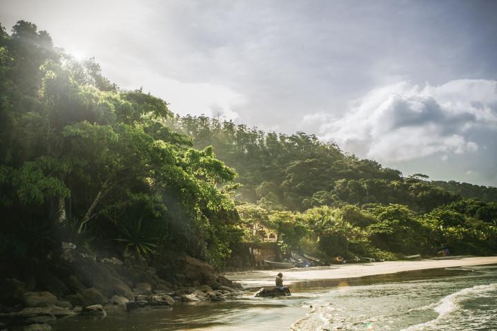 beach, lush greenery, ocean, sand