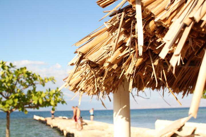 beach, sunshine. water, fun