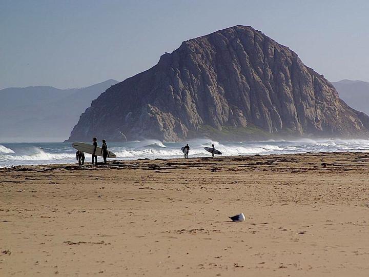 beach, surfing, ocean