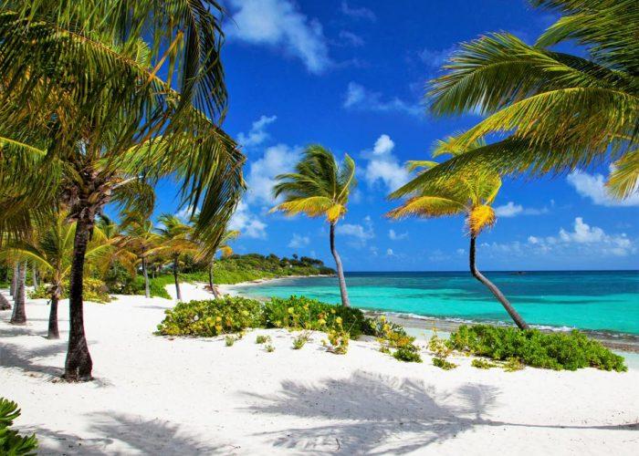 beach vacation, tropical