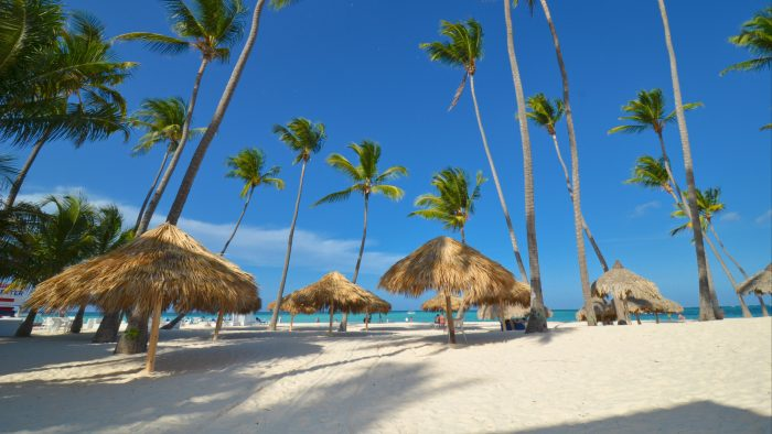 Hero_-_Thatched_palapas_and_coconut_trees_on_a_white-sand_beach.