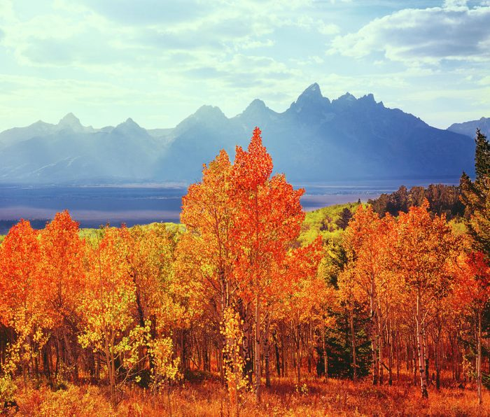 Aspen, Fall, Mounrains