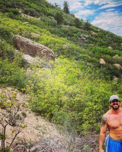 Hike, Castle Rock, Colorado, colorful