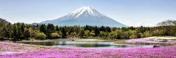 Mountain Fuji. Add it to the list!