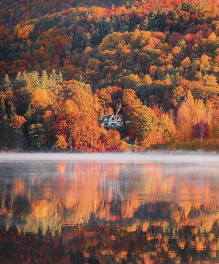 Fall in Vermont 🙌🏻❤️🧡💛💚