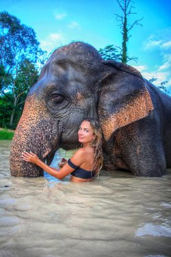 Visit an Elephant Sanctuary, on my vision list!