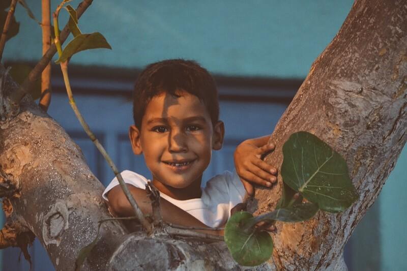 child, happy, climbing tree